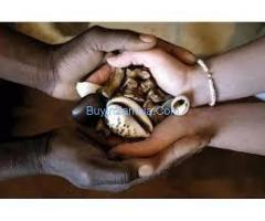 most healing----traditional healer --cure and removes black magic in belarus zealand