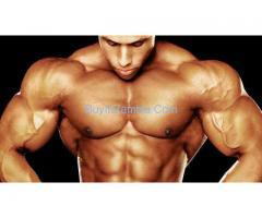 http://musclebuildingbuy.com/alpha-prime-elite/