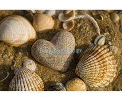 Love, divorce spells caster, Healer And Diviner. +27738618717 drmamaphinah