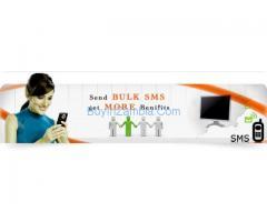 Bulk SMS Delhi,Bulk SMS Provider Delhi,Bulk SMS Company Delhi.