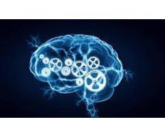 "http://perfecttips4health.com/opti-memory/ ""Opti Memory"""