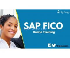 SAP FICO training online by very experienced trainer and certified consultant