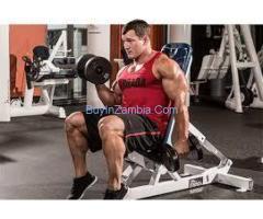 https://gomusclebuilding.com/alpha-pro-muscle/