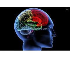 http://healthonlinereviews.com/protogen-advanced-brain-formula/