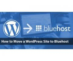 How To Transfer Wordpress Domain To BlueHost?