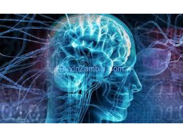 http://healthonlinereviews.com/sg-11-brain/