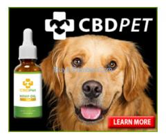 CBD Dog Treats For Anxiety