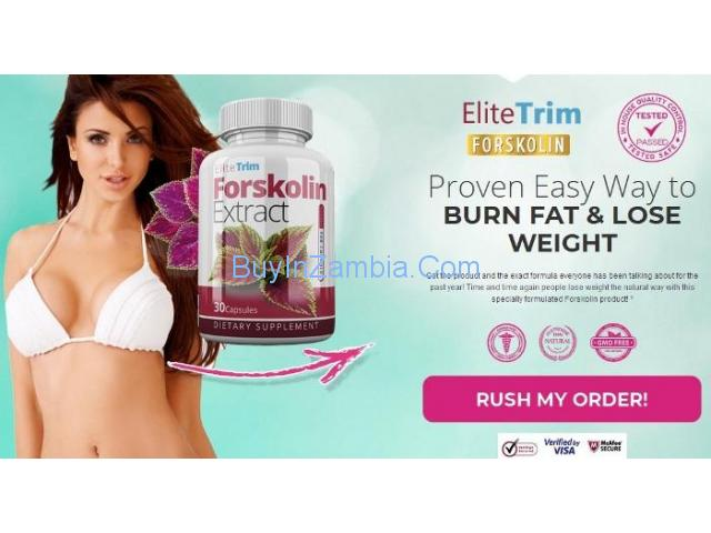 http://advancemenpower.com/elite-trim-forskolin/