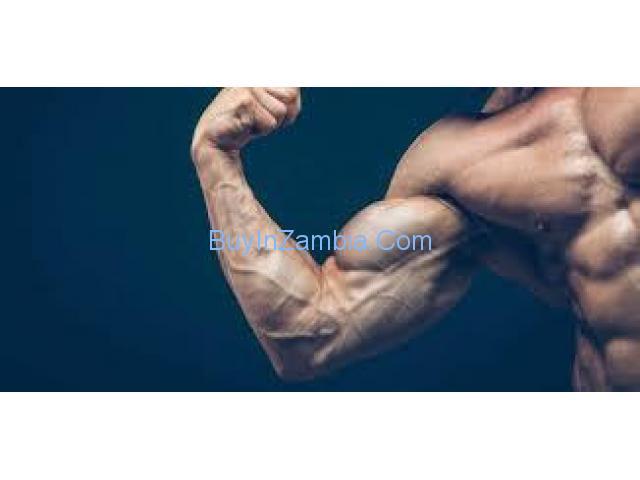 https://musclebuildingbuy.com/shred-xl/