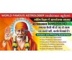 Business Problem Solution Specialist Astrologer+91-9799298747