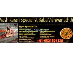 Vashikaran Specialist In Noida ..09521591128