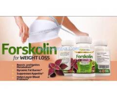 http://supplementforhelp.com/forskolin-fat-loss-extract