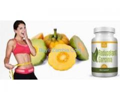Reducelant Garcinia garcinia cambogia fruit extract