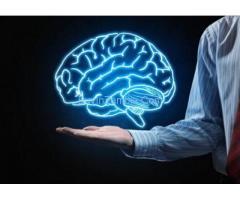 https://nutritioncurcumin.com/sg-11-brain/