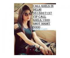 Call Girls In Delhi,Short 1500 Night 5000,Delhi Call Girls 9818667137